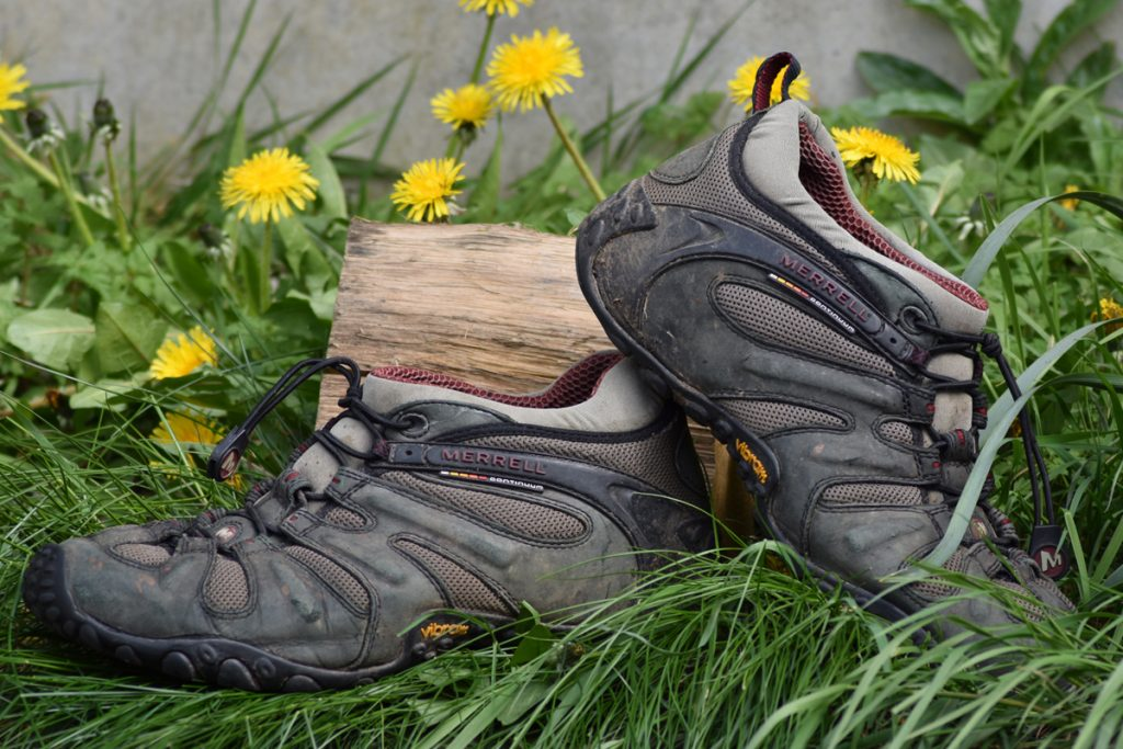 Merrell Chameleon Prime Stretch Reviews