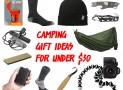 10 Genius Camping Gift Ideas Under $30